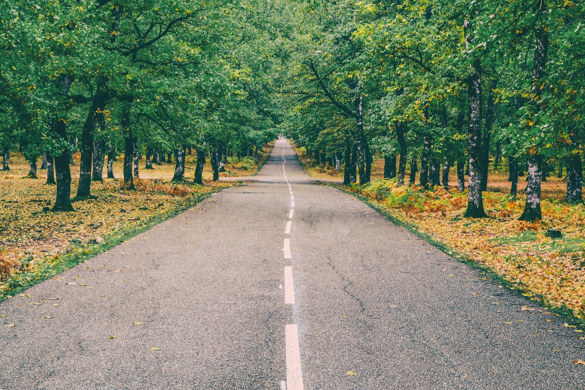 road-2898258_1920 (2).jpg